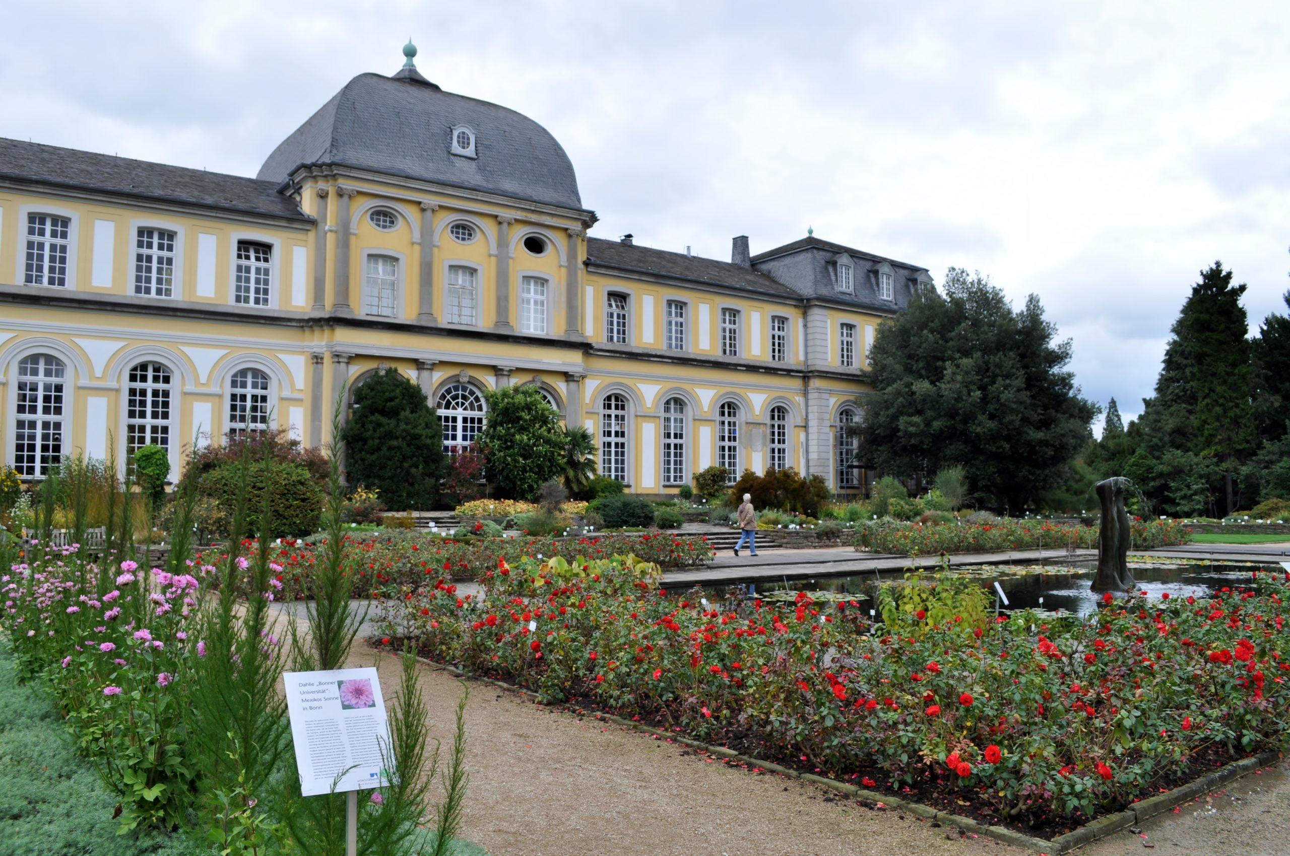 Ботанический сад Бонна