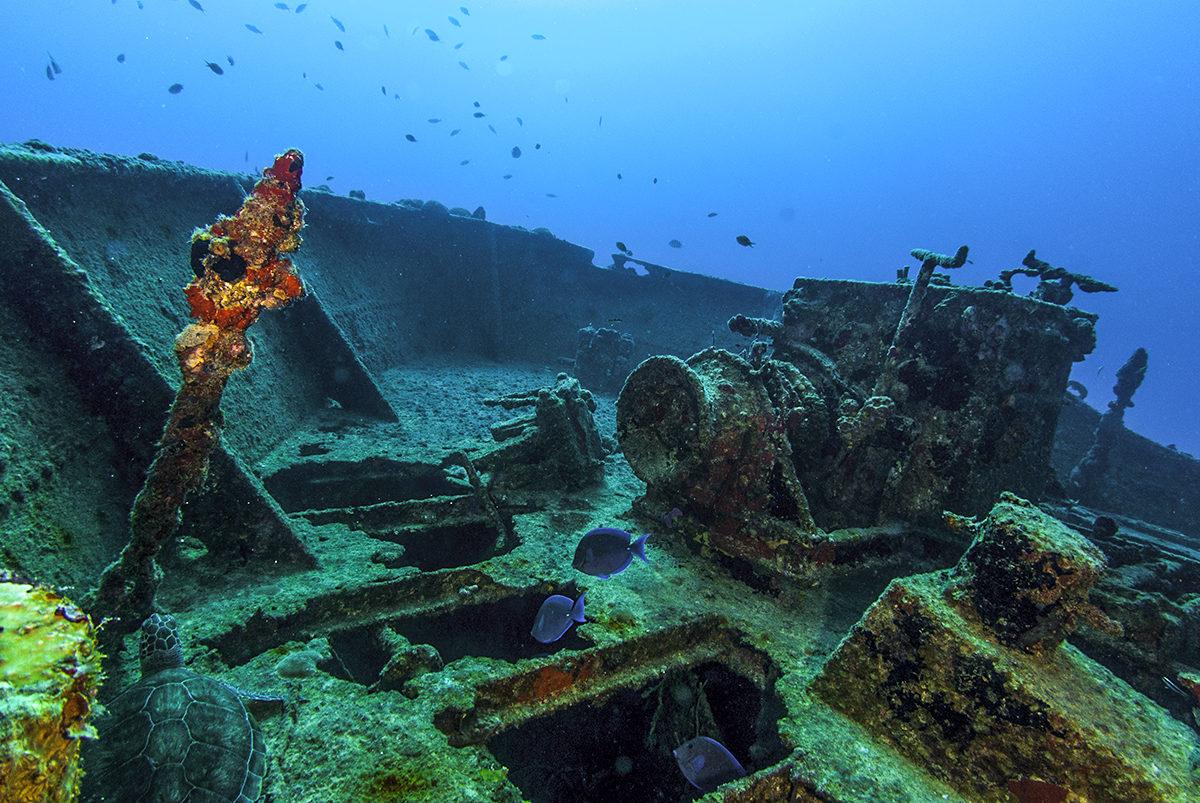 Затопленное судно