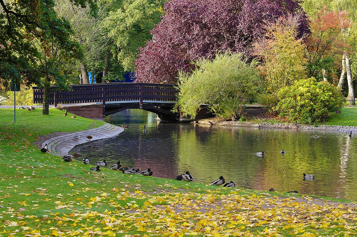 Городской парк Нюрнберга