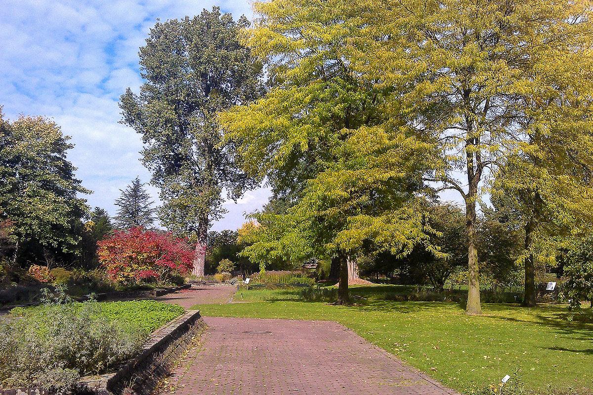 Ботанический сад, Дюссельдорф