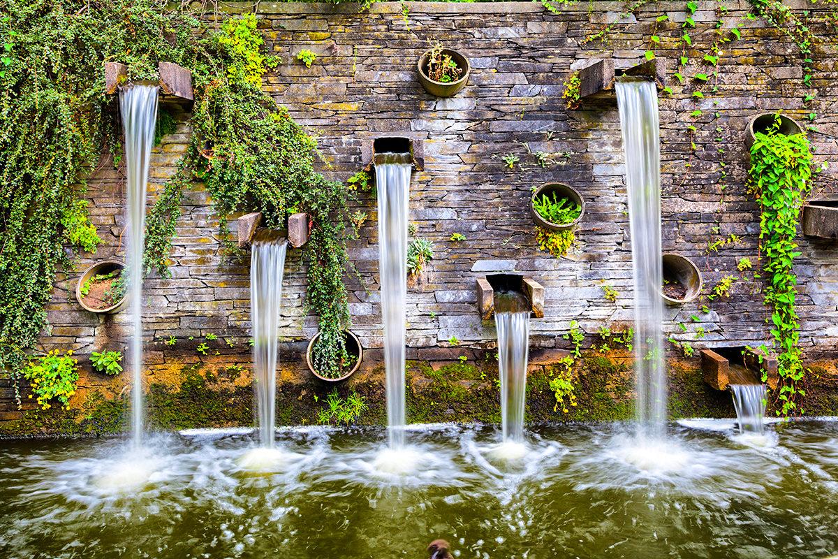 Удивительные уголки Ботанического сада Гамбурга