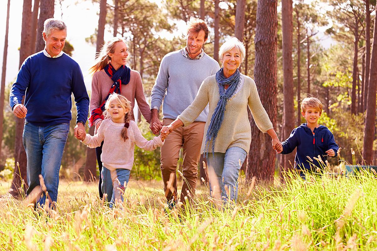 Прогулки по лесу всей семьей