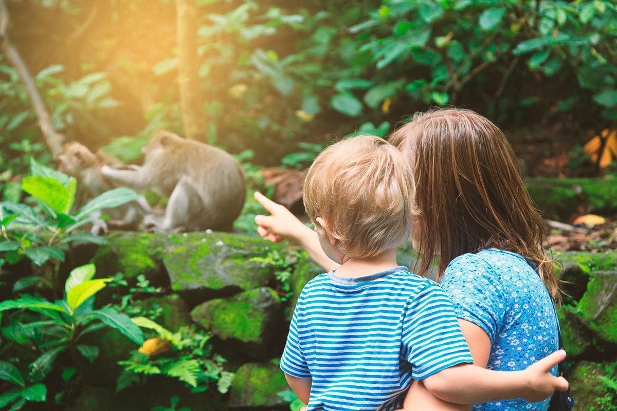 В зоопарке