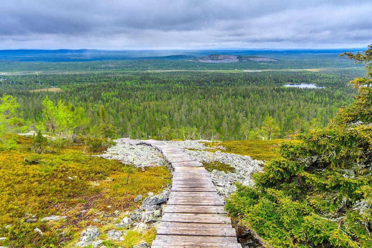 Просторы национального парка как на ладони