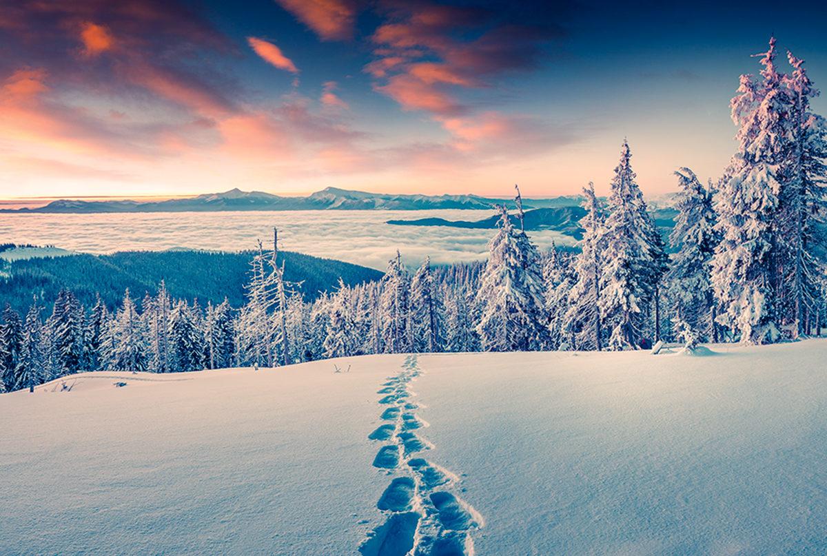 Волшебная природа Лапландии, Финляндия