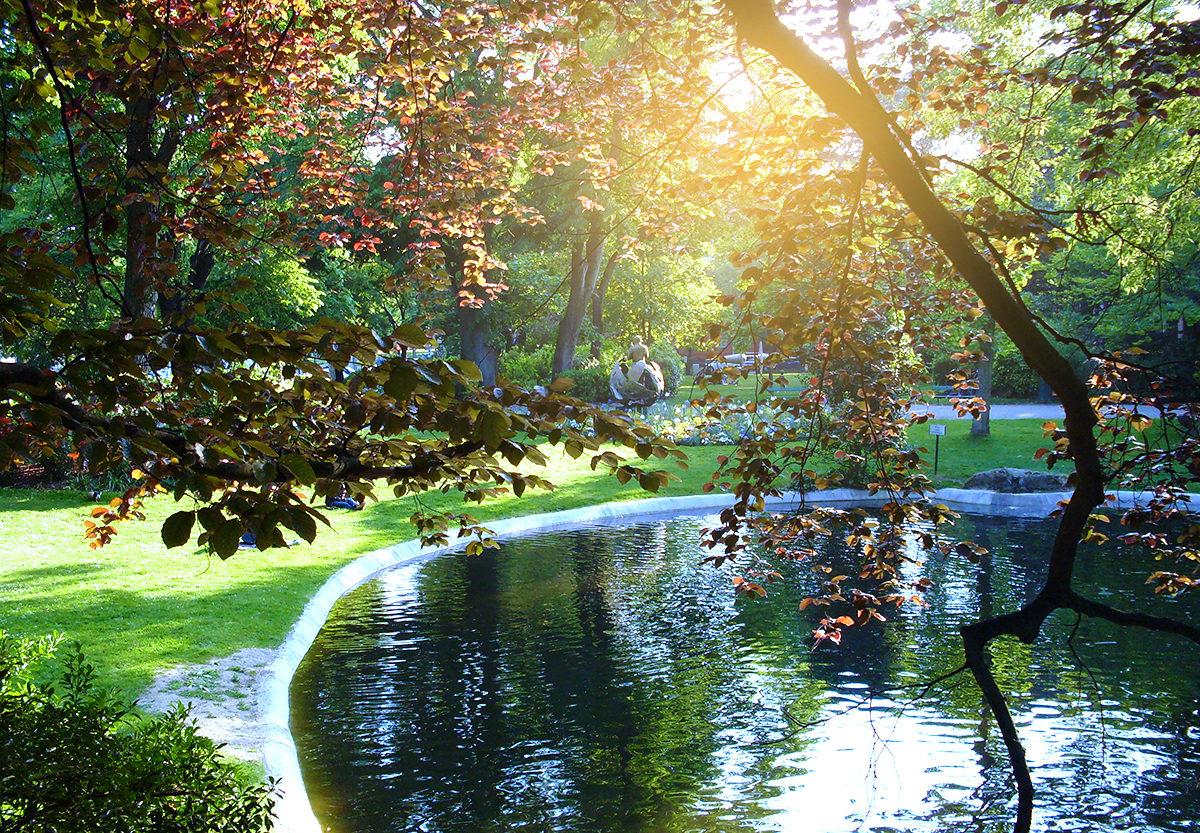 Королевский сад, Тулуза