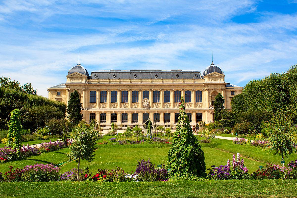 Национальный музей естественной истории, Париж