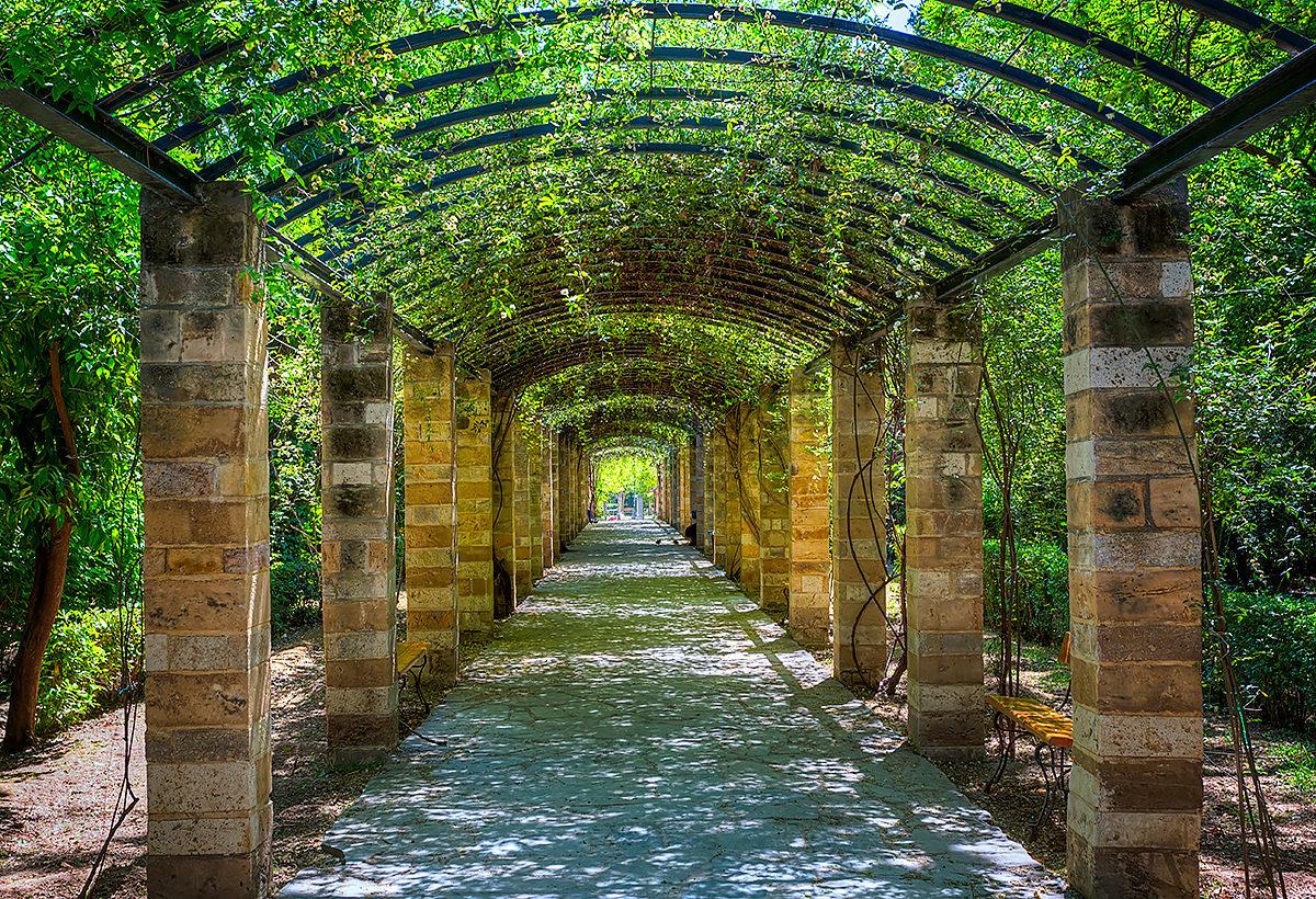 Один из уголков Национального сада