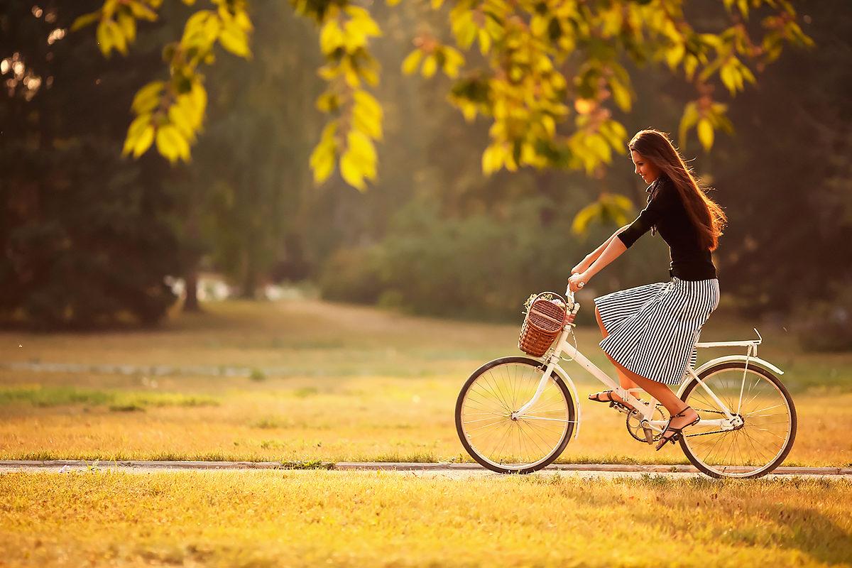 Велопрогулка по лесу