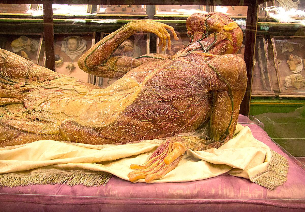 Один из экспонатов музея Спекола