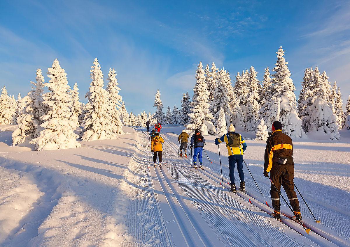 Маршруты для беговых лыж