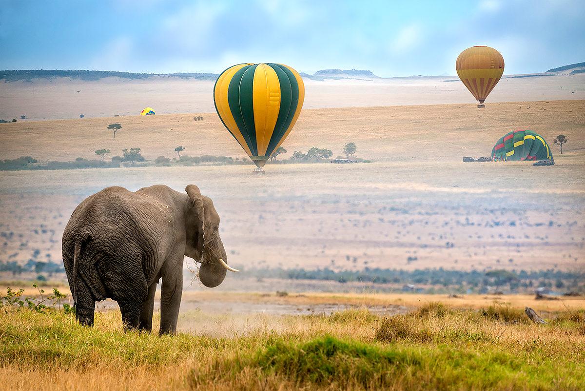 Экотуризм в Кении