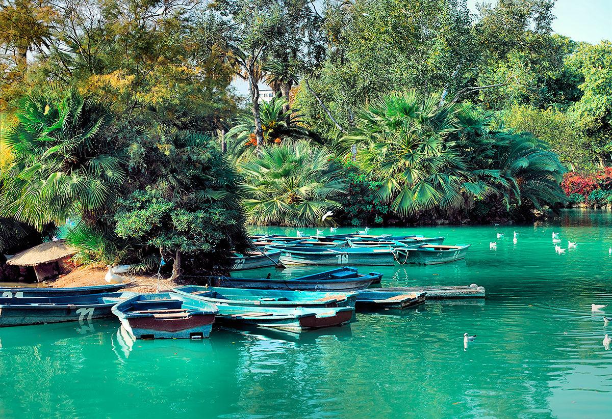 Пруд с лодками, Ботанический сад Барселоны