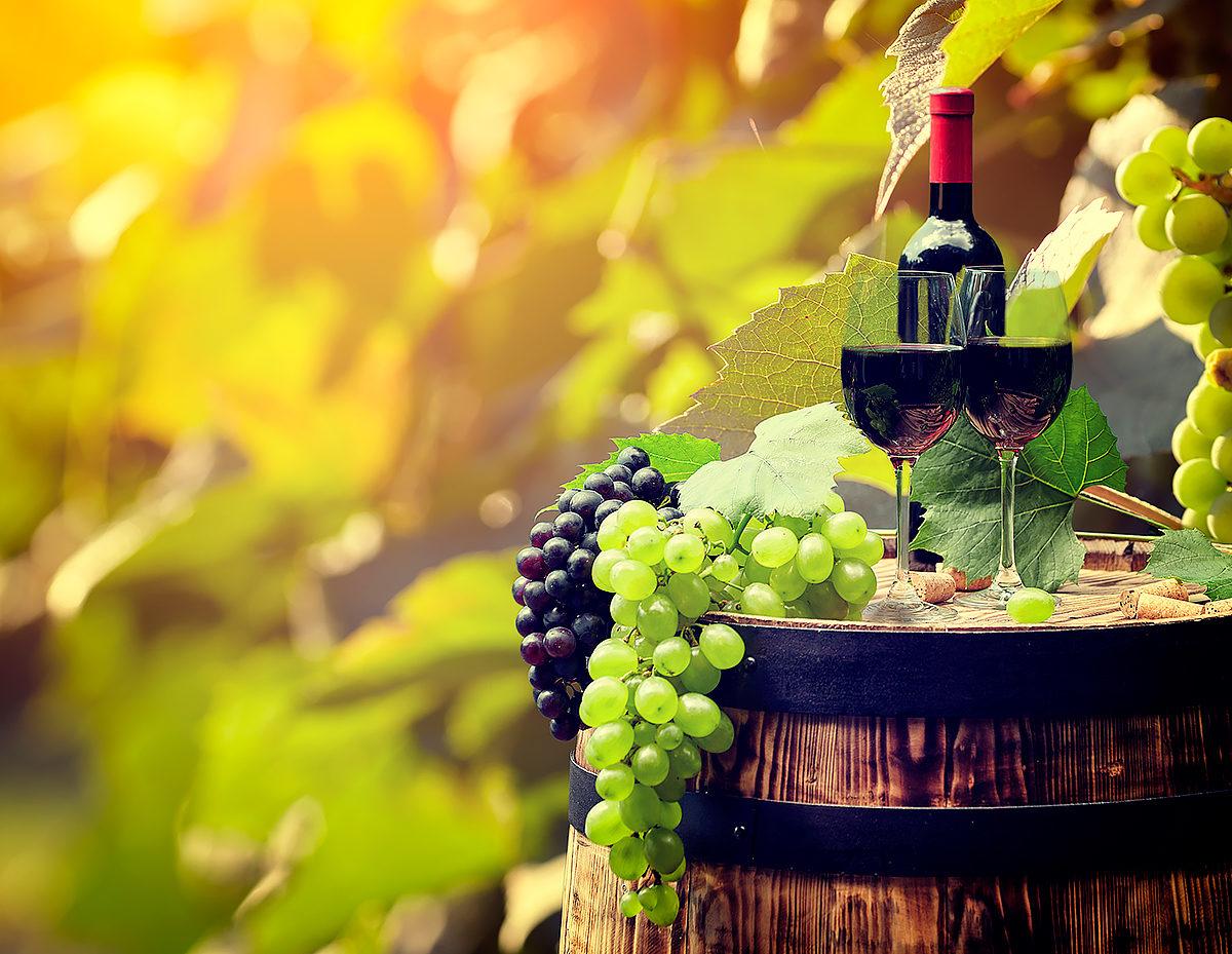 Отведать испанского вина