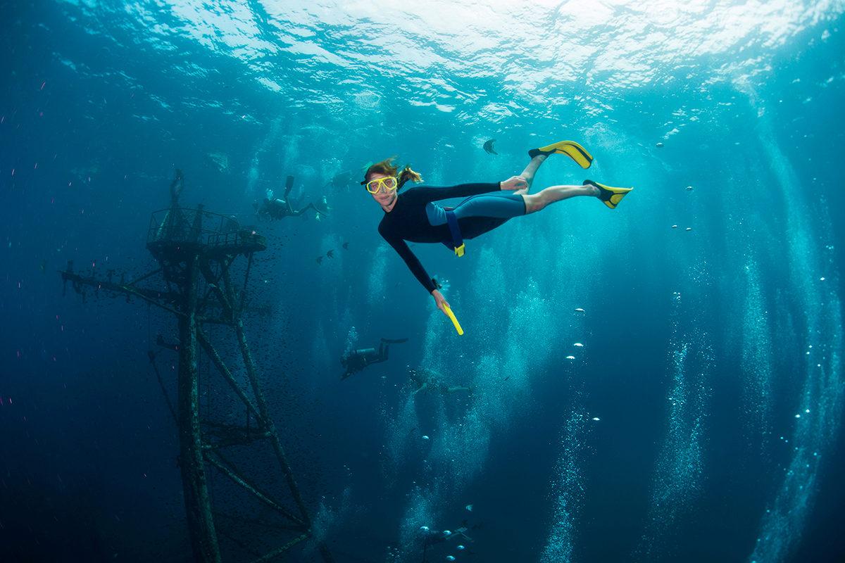 Подводное путешествие к затонувшим кораблям