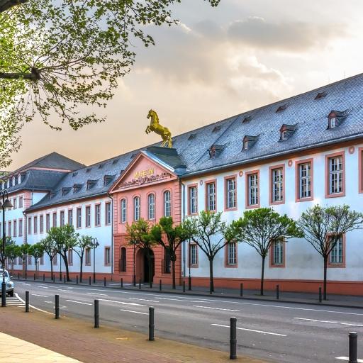 Муниципальный музей Майнца