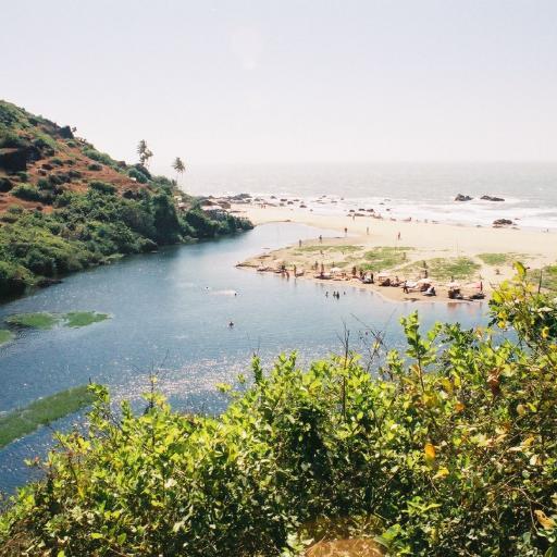 Сладкое озеро и баньян в Арамболе