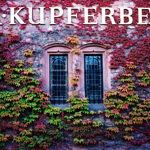 Завод игристых вин Kupferberg