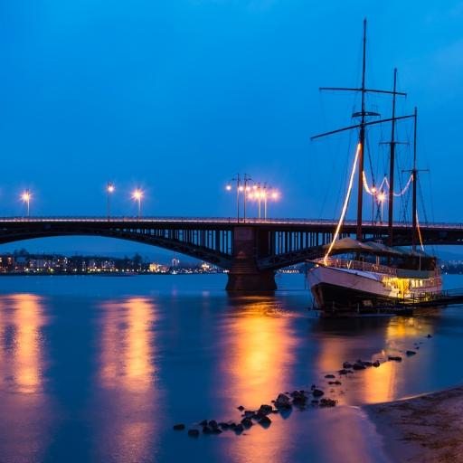 Мост Теодора Хойса