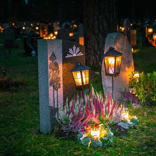Кладбище Скугсчюркогорден