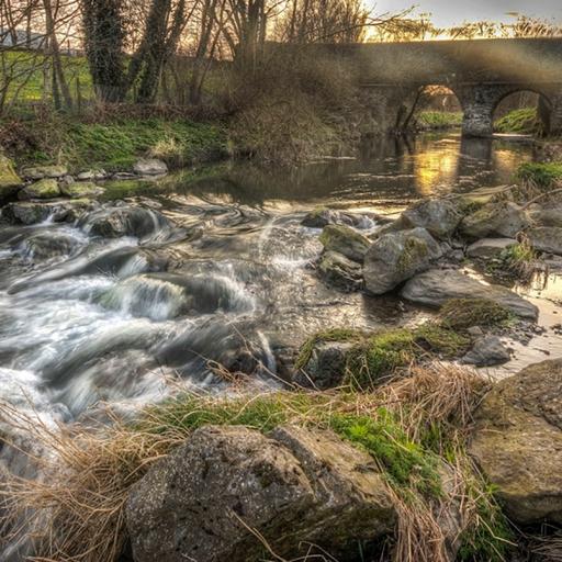 Парк долины реки Толки