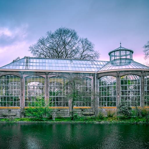 Ботанический сад (Ортус Ботаникус)