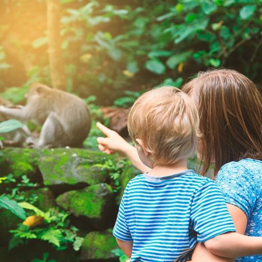 Зоопарк Хельсинки