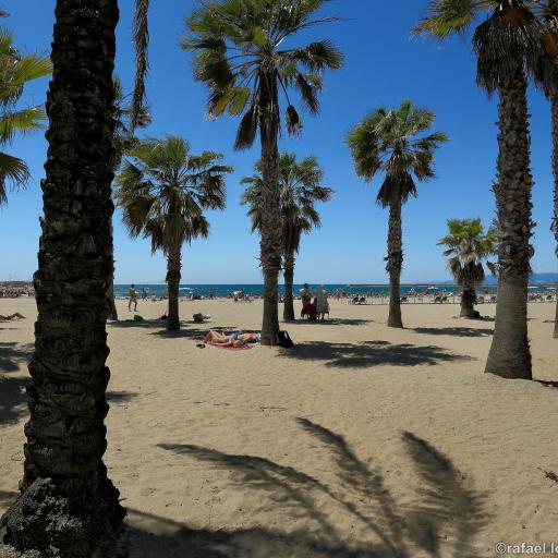 Пляж Понент