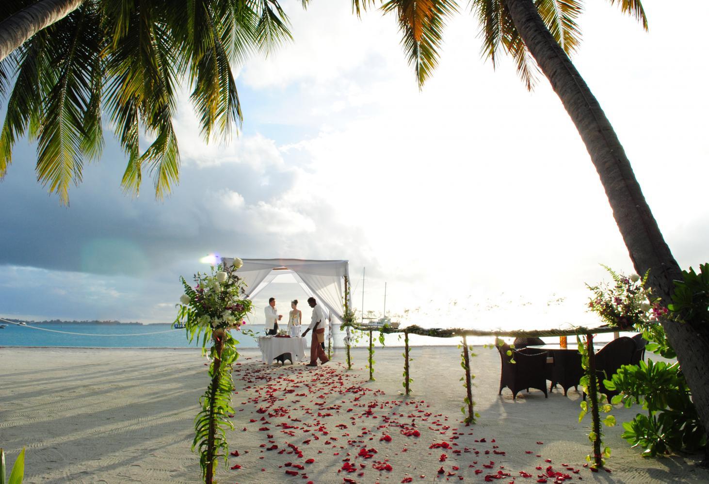 Где провести медовый месяц. Экзотика
