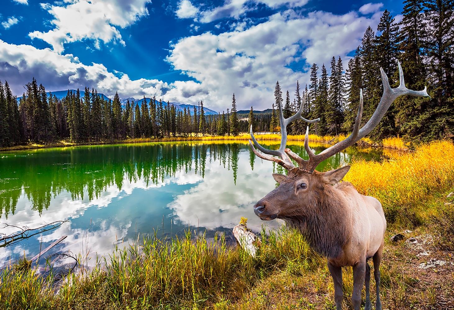 Самые красивые горные озера Канады