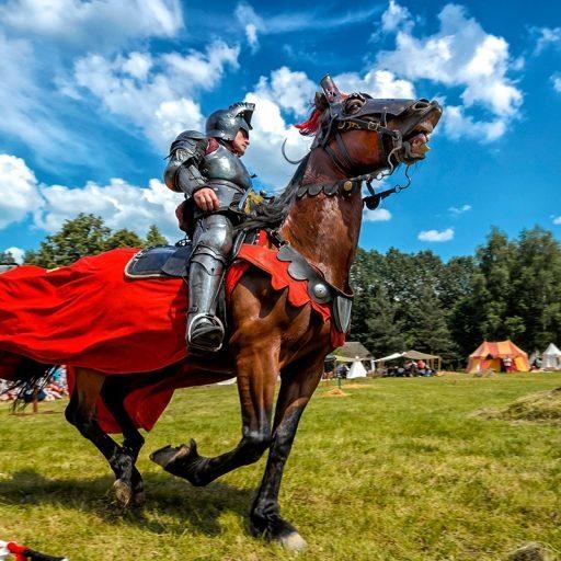 Фестивали исторической реконструкции
