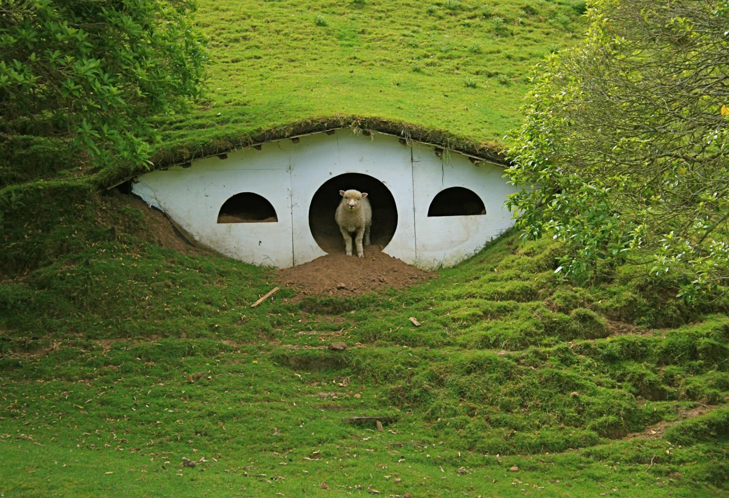 Хоббитон, Матамата, Новая Зеландия
