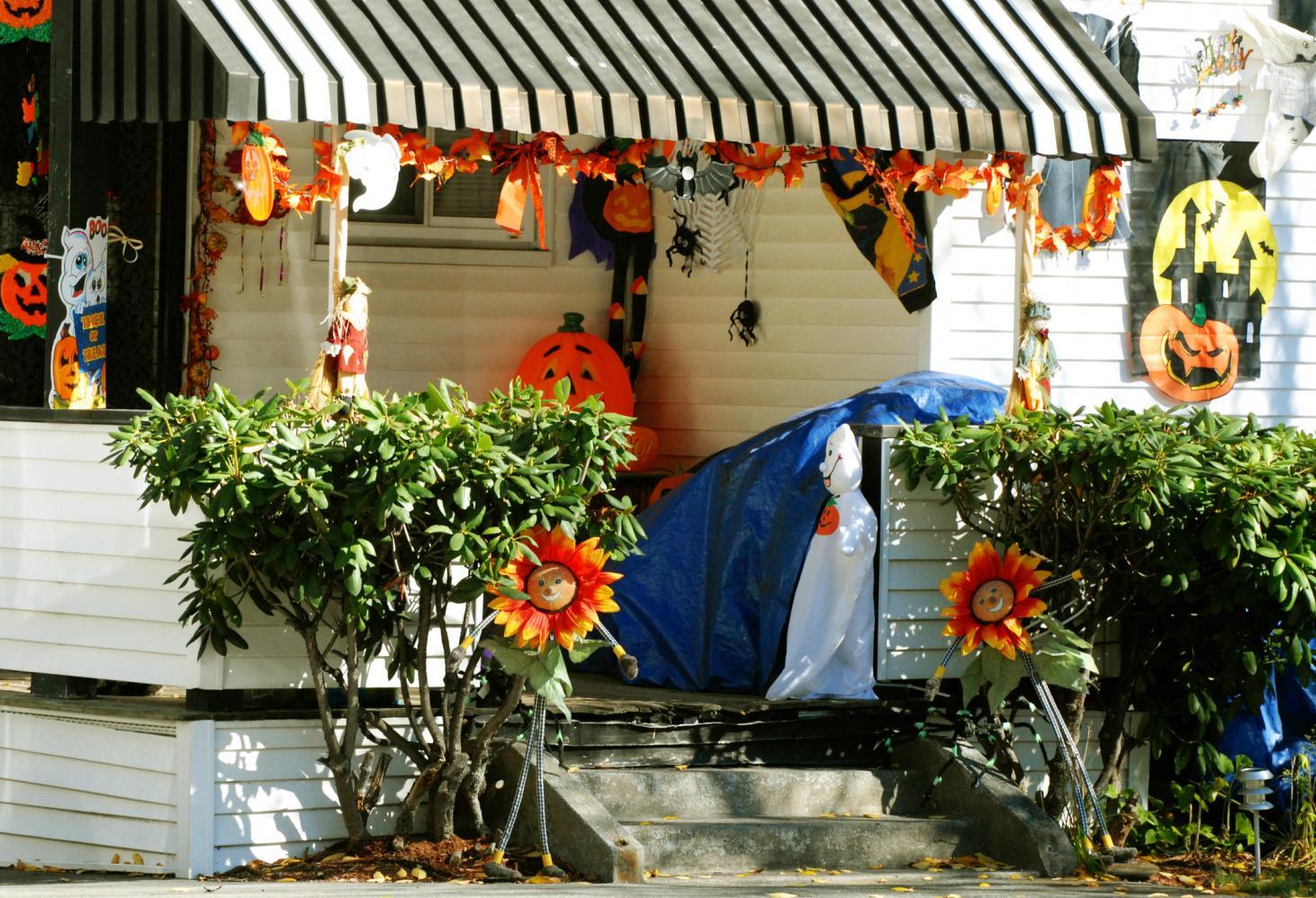 Как отмечают Хэллоуин в Нидерландах