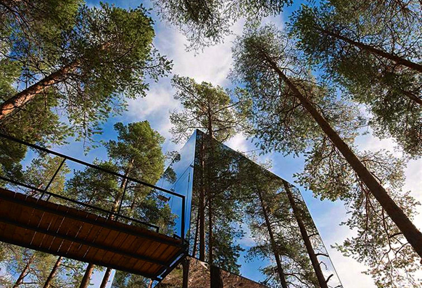 Tree Hotel ( TreeHotel ). Харадс. Северная Швеция. Отель на деревьях