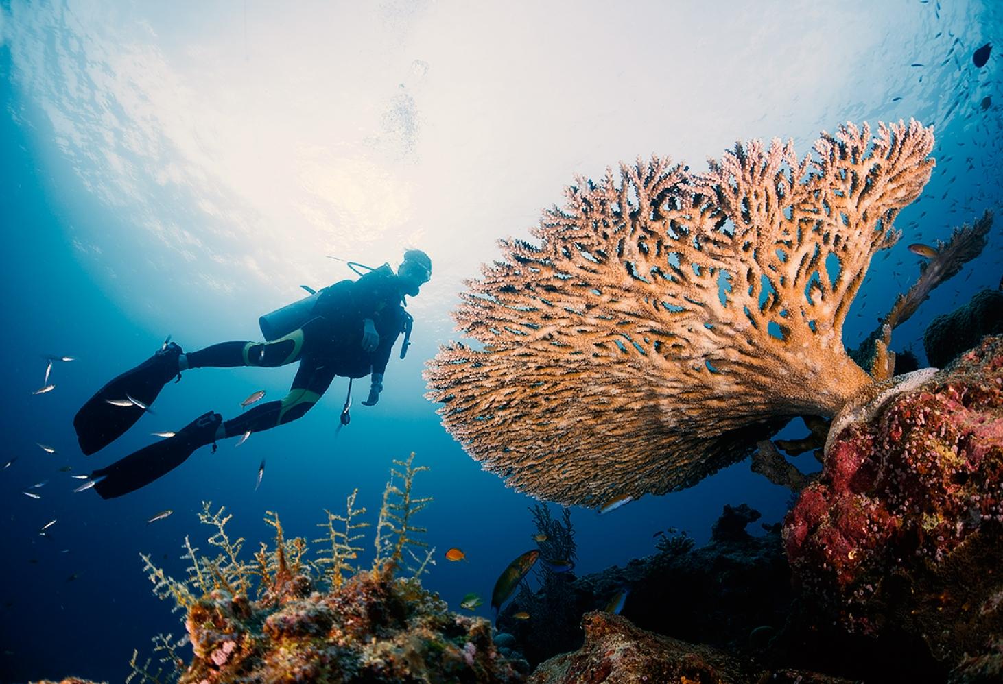 Симиланские острова, Таиланд
