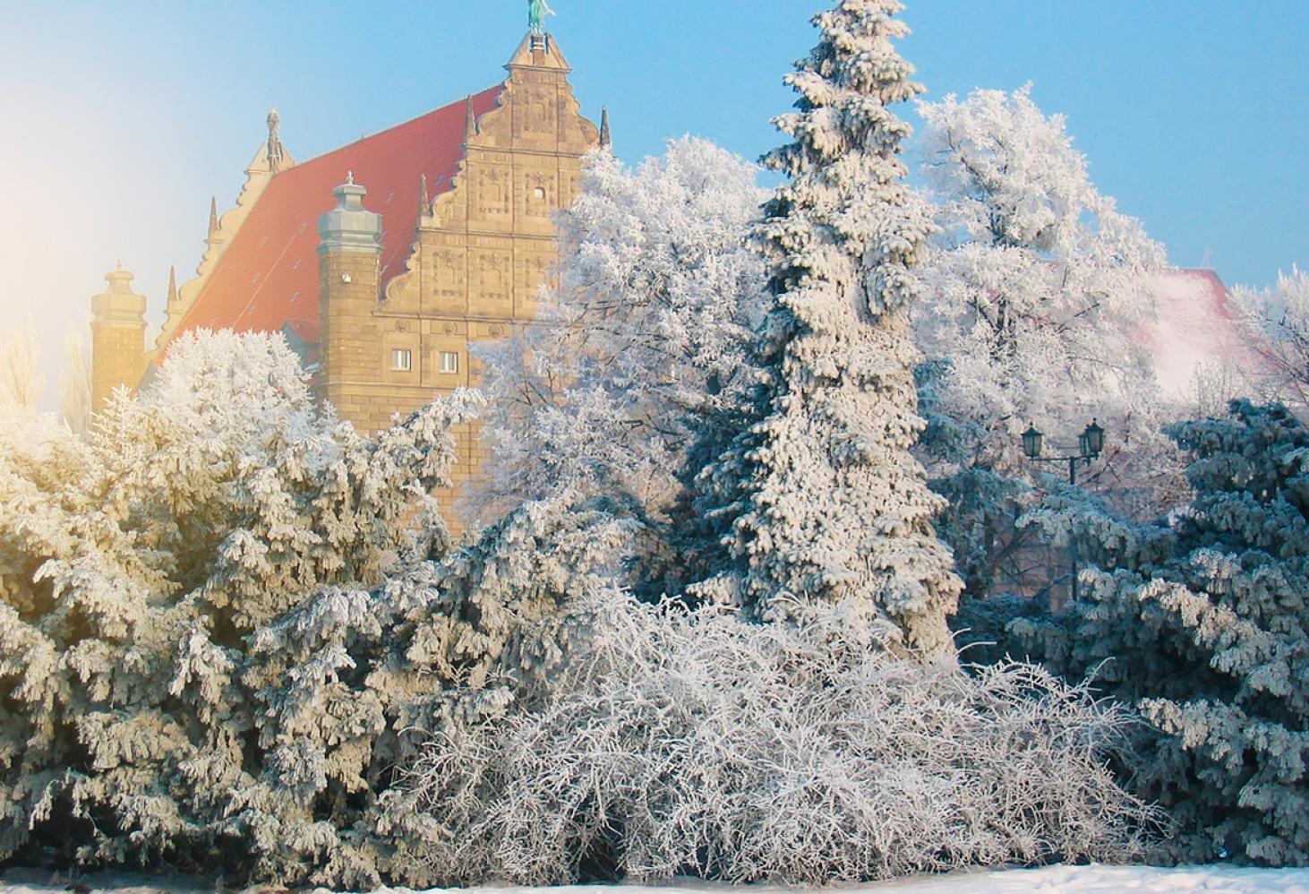 Торунь (Польша)