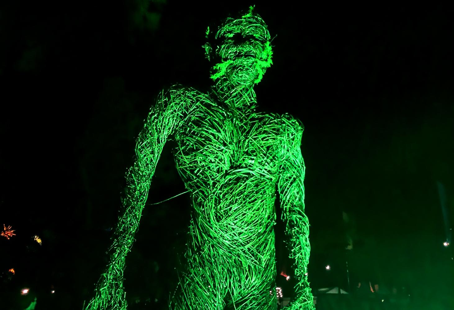 The Electric Picnic (Ирландия, конец августа-начало сентября)
