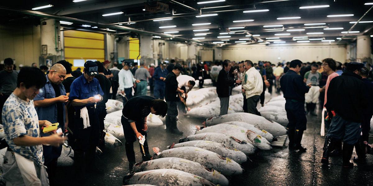 Токио, рыбный рынок Цукидзи